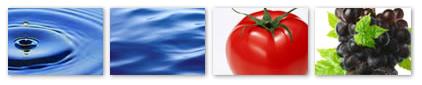 水、トマト、ぶどう