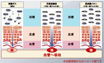 炭酸理論からのイメージ図