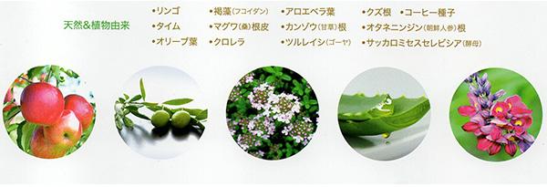 天然&植物由来 スパカル ハーブエッセンス