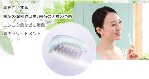 ハーブ歯磨き粉 レモングラス